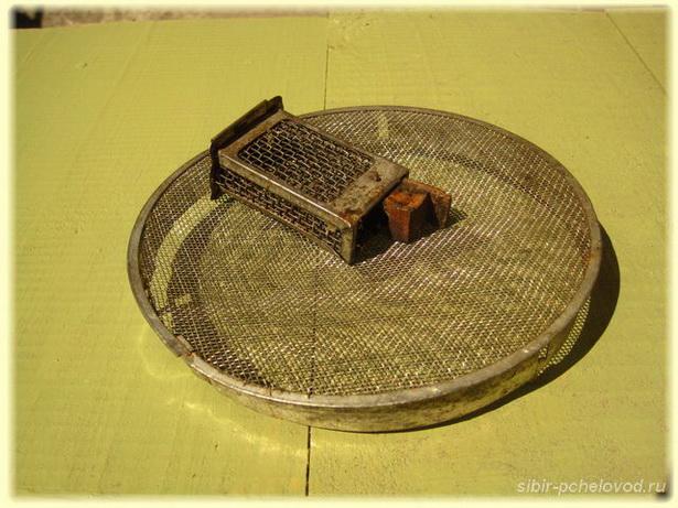 маточная клеточка - необходимый инвентарь пчеловода