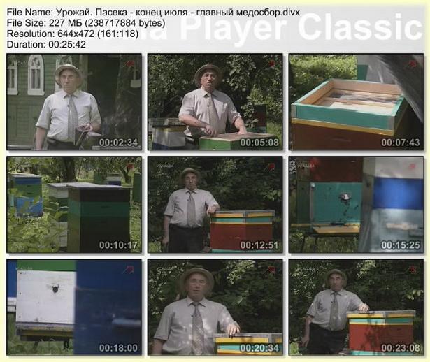 Видео передача по пчеловодству - Урожай. Пасека. серия