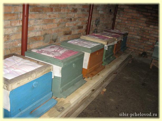 как сделать омшаник для пчел